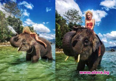 Капчикова на слон