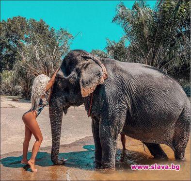 Андреа се гушка със слон