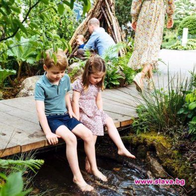 Уилям и Кейт споделиха очарователни нови снимки на децата