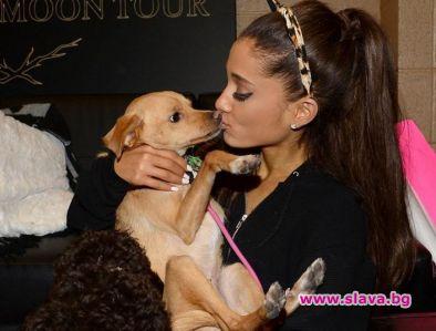 Ариана Гранде на турне с кучетата си